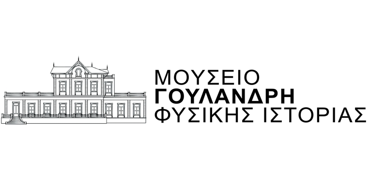 6logo mgfi greek logo